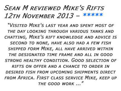 Mikes Rifts Review 11