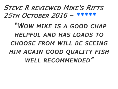 Mikes Rifts Review 16