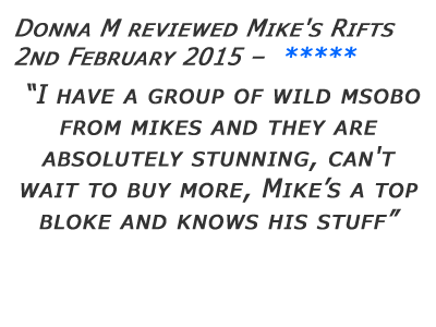 Mikes Rifts Review 20