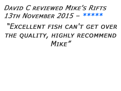 Mikes Rifts Review 25