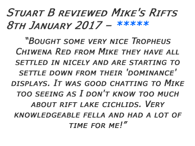 Mikes Rifts Review 30